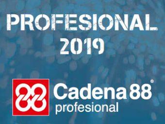 Profesional 2019